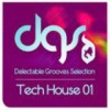 Audio Loops - Tech House Grooves Selection 01