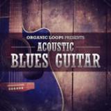 Acoustic Blues Guitar cover art