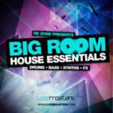 Re-Zone Presents Big Room House Essentials cover art