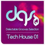 Tech House Grooves Selection 01 cover art